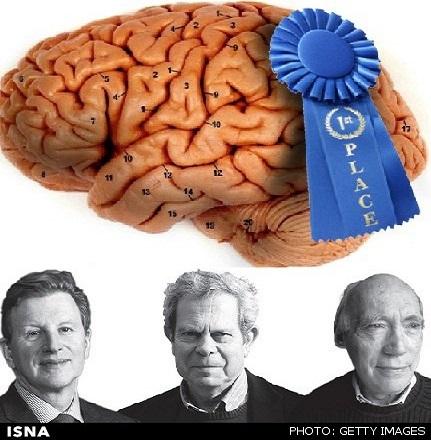 برندگان جایزه تحقیقات مغز 2016 معرفی شدند