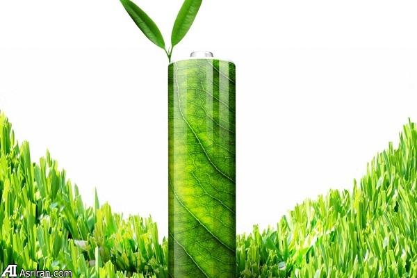 ساخت باتری دوستدار محیط زیست با برگ