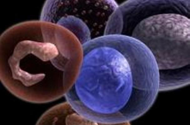 نانوذرات التهاب روده را درمان میکند