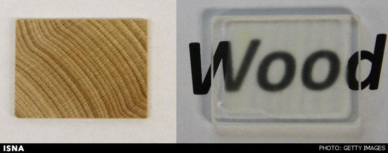 موفقیت محققان در شفاف کردن چوب!