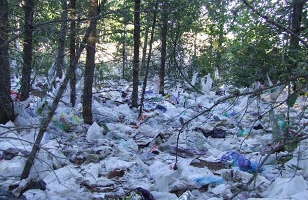 تولید پلاستیک زیست تخریب پذیر نانوکامپوزیتی