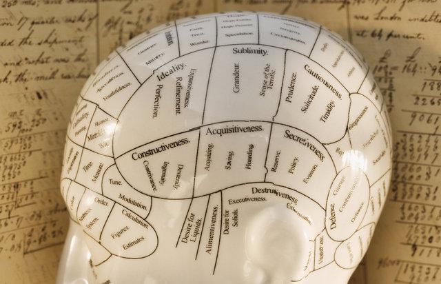 جامعترین نقشه مغز انسان تهیه شد
