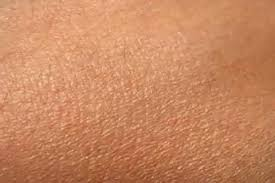 چرا پوست انسان ضد آب است؟