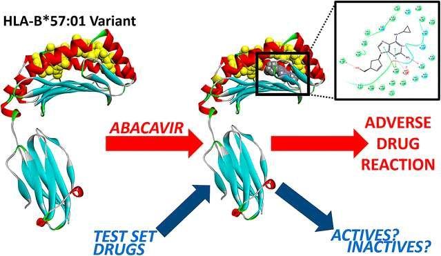 پیشبینی تاثیر داروی ایدز با شبیهسازی رایانهای