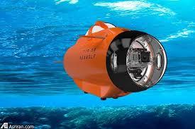 لذت تصویربرداری اکشن در زیر آب با گرگ دریا!